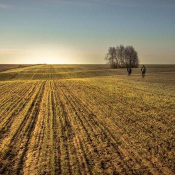 2 hunters walking in a field