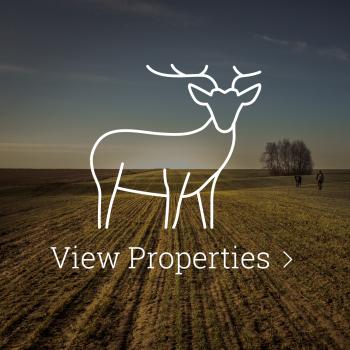 View Properties Button